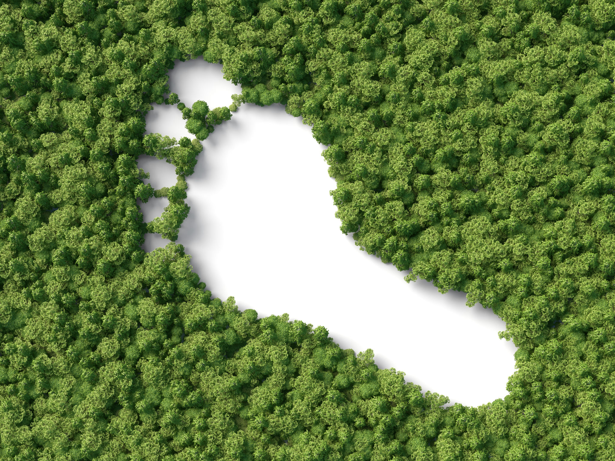 Print on demand leads to conscious shopping and reducing carbon footprint? How?